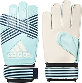 adidas Ace Training Goalkeeper Energy Aqua/Energy Blue/Legend Ink Gloves