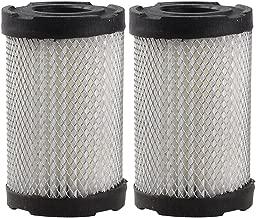 Panari (Pack of 2) Air Filter for Tecumseh 35066 Sears 10096 63087A
