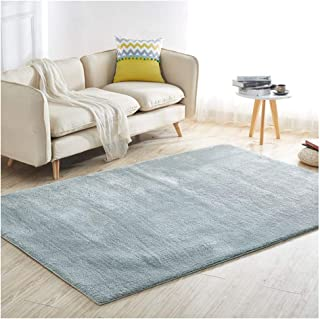 Rugs Rugs Carpets Tatami Mat Gym Yoga Homes Living Room Bedroom Modern Area Home Decorative, 5 Colors, 5 Sizes (Color : C,...