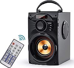 Bbq Speaker