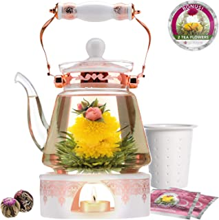 Teabloom Buckingham Palace Teapot & Flowering Tea Gift Set (6 Pieces) - Stovetop Safe Glass Teapot (40oz/1200ml), Porcelain Lid, Tea Warmer, Porcelain Loose Tea Infuser, 2 Gourmet Rose Blooming Teas