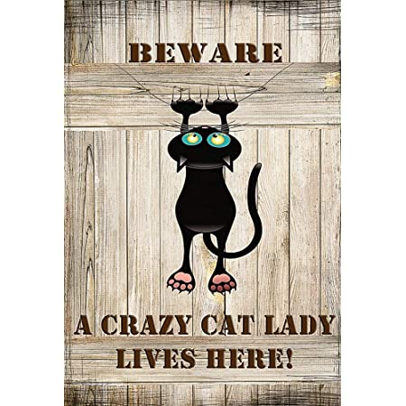 Amazon Com Beware A Crazy Cat Lady Lives Here Decorative Garden Flag Double Sided 12 X 18 Inches Cat Woman Black Cat Sign Banner Garden Outdoor