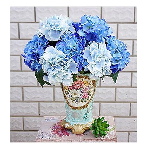 Blaue Blumen Amazon De