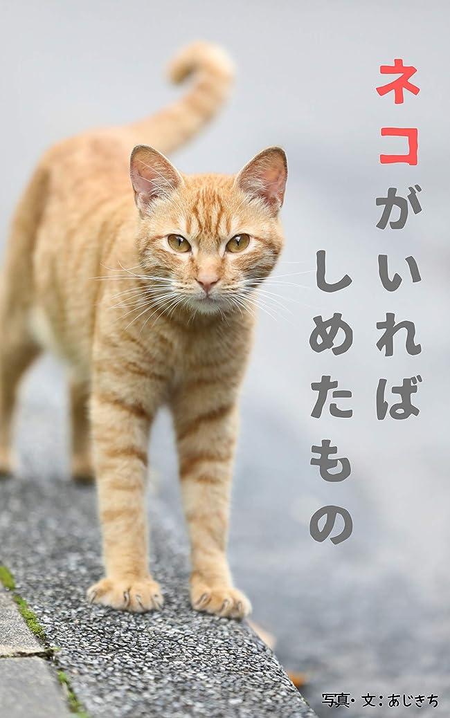姿勢見せます自治ネコがいれば しめたもの: 台湾とベトナムの街で猫探し