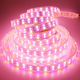 LEDENET 16.4FT Double Row RGB+Warm White 5050 LED Strip Lights 24V 600LEDs Waterproof in Silicone sleeving IP67