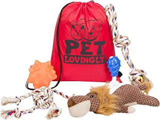 Pet Lovingly Dog Toys Set for Medium to Large Sized Doggies – Durable & Pet-Friendly Design for Big & Energetic Dogs, Heavy Duty Chew & Squeaky Toys, Reduce Boredom - Value Pack with Colorful Bag