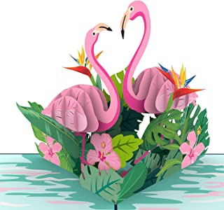 Unipop Cards Flamingo Pop Up Cards, Happy Birthday Card, Mothers Day Greeting Cards, 3D Birthday Card, Anniversary 3D Greeting Cards, Animal Birds Greeting Card, Thank You Pop Up Greeting Cards