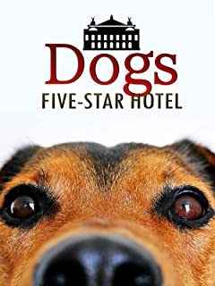 Dogs Five-Star Hotel