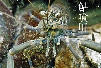 akuigawa tannsuigyo (Japanese Edition)