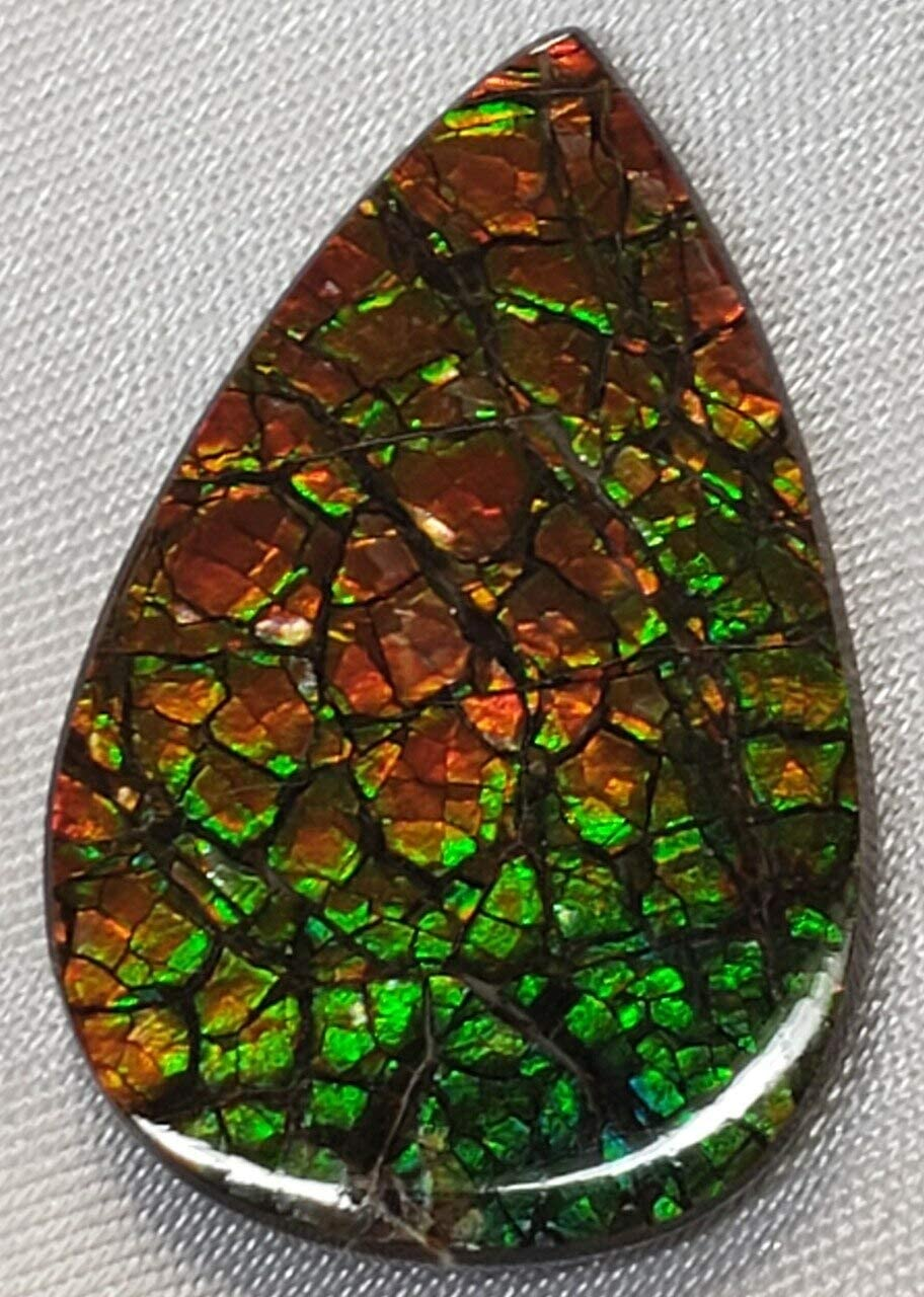29x19 Nippon regular agency Ammolite NEW before selling Canada's Opal Tear Drop Color Form Gold Green 2