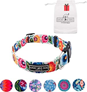 Lucky Love Dog Cute Female Dog Collar Leash Set | Vivid Colorful Pretty and Unique Designs | Small Medium Large Girl Dogs | Floral Holiday Collar | Soft Your Purchase Helps Rescue Dogs