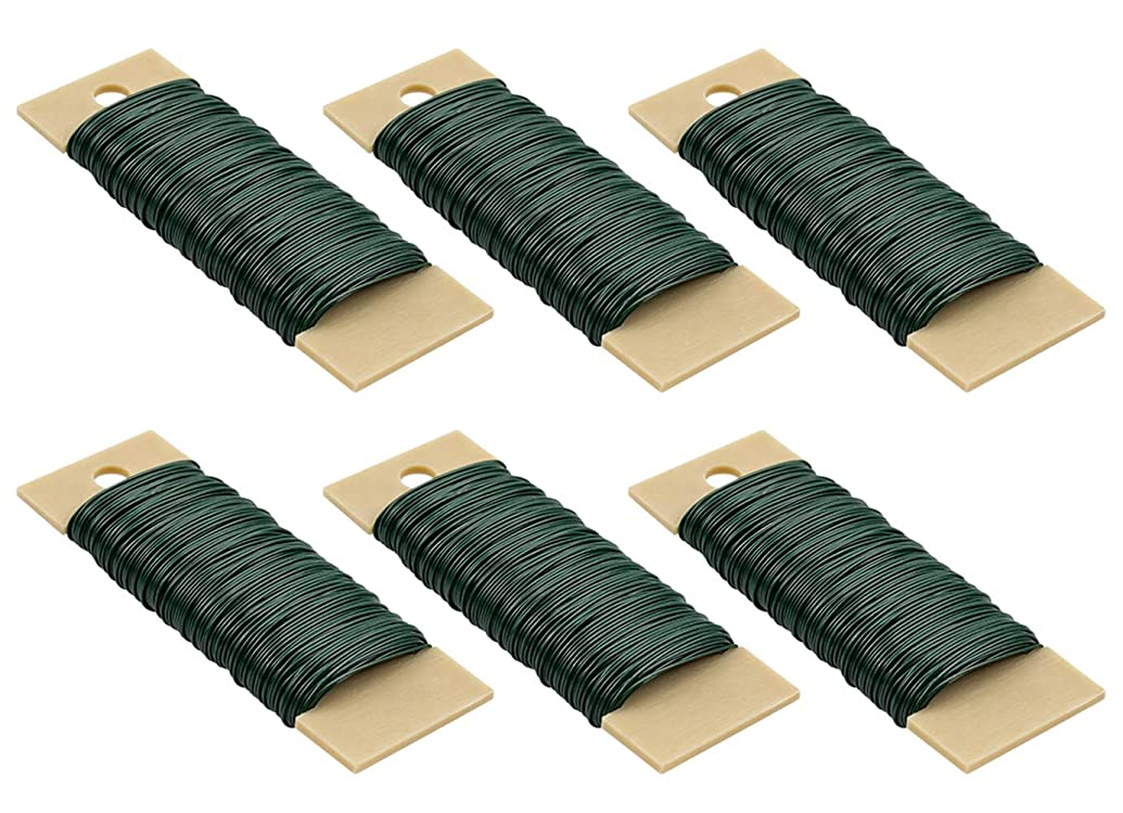 Foraineam 6-Pack 38 Yards 22 Gauge Green Floral Wire Flexible Paddle Wire for Crafts, Wreaths, Garland and Floral Arrangements