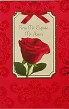 Para Mi Esposa - Mi Amor - Feliz Dia de los Enamorados / Happy Valentine's Day Greeting Card in Spanish for Wife