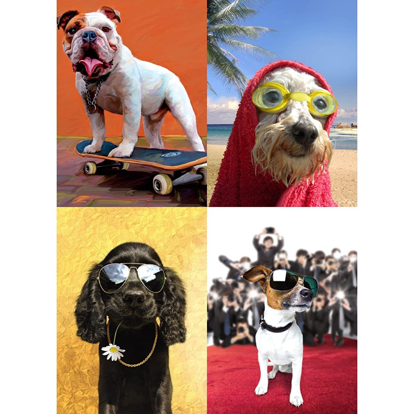 Tree-Free Greetings Cool Dogs Birthday Card Assortment, 5 x 7 Inches, 8 Cards and Envelopes per Set (GA31580)