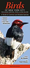 Birds of New York City, incl. Central Park & Long Island: A Guide to Common & Notable Species