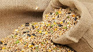 Mix Seed for All Types of Bird Food 1 Kg (Pack of 1)