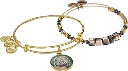 Sand Dollar Set of 2 Bracelet