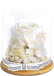 KING DOO Handmade Preserved Real Rose, Upscale Exquisite Gift Flowers, Eternal Life Never Withered Roses Flowers for Valentine's Day, Birthday, Anniversary, Christmas (White)