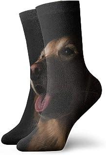 Pengyong, Pengyong - Calcetines Deportivos Transpirables para Hombre, diseño de Labrador de Animales, Color Negro