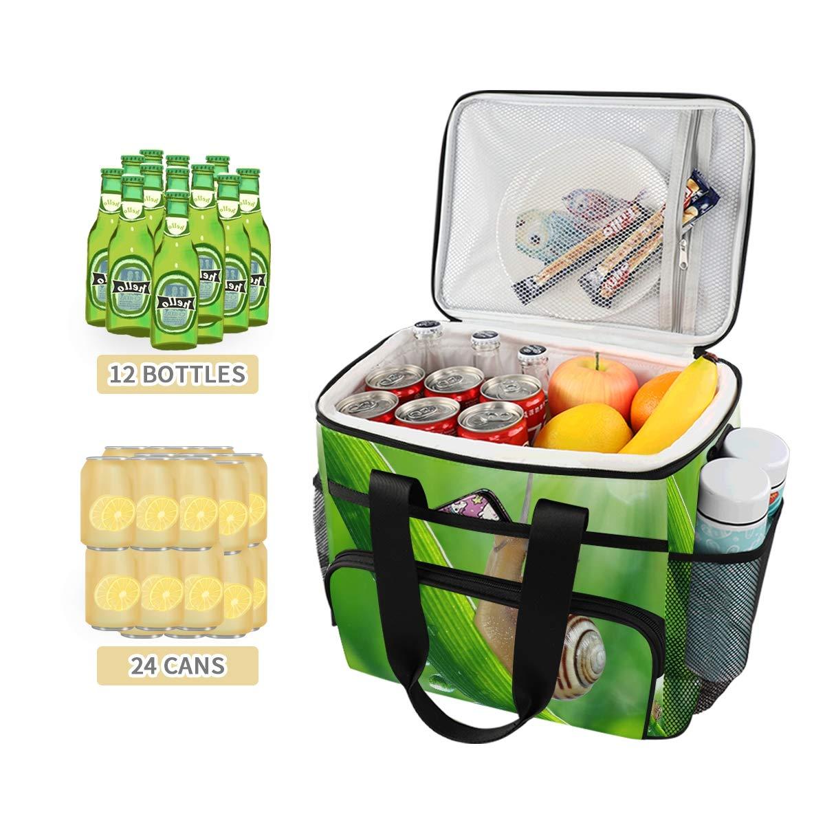 Picnic Cooler Box Snail On Dewy Grass Ice Pack Portable Work Lunch Bag Correa para el hombro: Amazon.es: Hogar