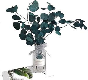 Preserved Fresh Eucalyptus Leaves 5 OZ, 70cm Dried Eucalyptus Stems for Flower Arrangements Wedding Home Decor (Blue)
