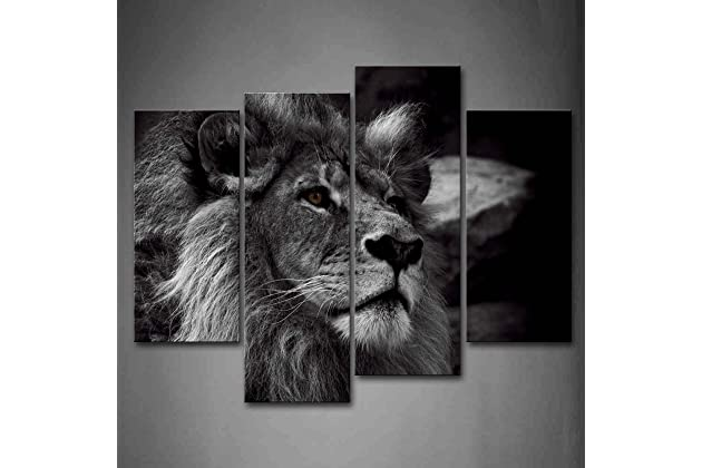 Best Lion Paintings For Wall Amazoncom