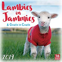 Lambies in Jammies & Goats in Coats 2019 Wall Calendar