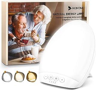 HOSOME 10,000 Lux SAD Light Therapy Lámpara portátil, lámparas solares para la depresión estacional, 4 configuraciones de temporizador con función de memoria, tamaño compacto