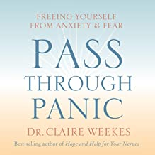 Pass Through Panic: Freeing Yourself from Anxiety and Fear