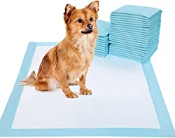 BESTLE Pet Training and Puppy Pads Pee Pads for Dogs 22 x22 -100 Count Super Absorbent & Leak-Free