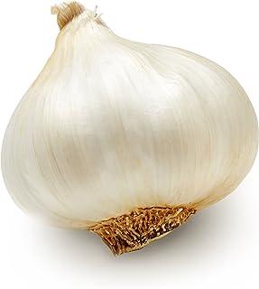 Garlic, 1 Bulb