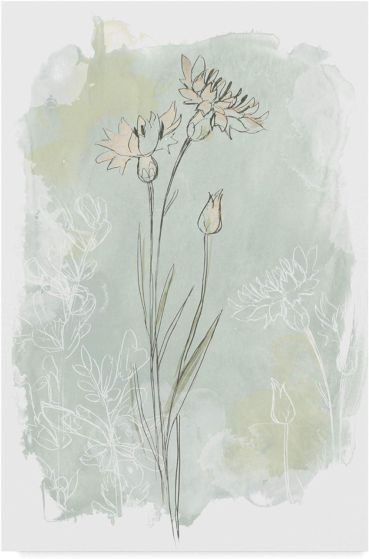 Trademark Fine Art Stone Flower Study I by June Erica Vess, 12x19
