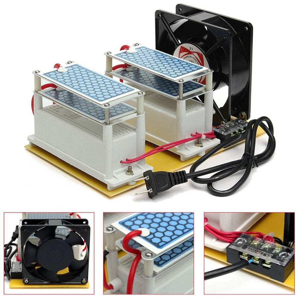 dastrues Generador de Ozono AC 220 V 20 g Ozone Generador ...