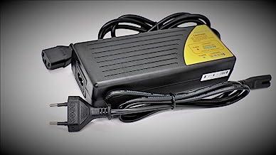 Amazon.es: baterias para patinetes electricos