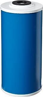 Pentek GAC-BB Drinking Water Filter (9-3/4