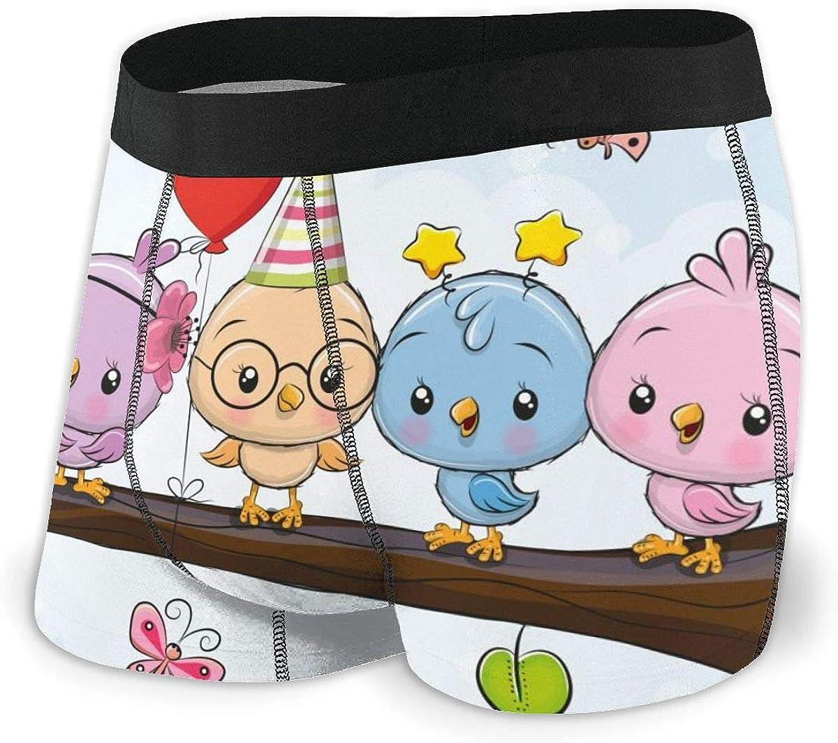 Mens Boxer Briefs Five Cute Cartoon Birds Breathable Underwear