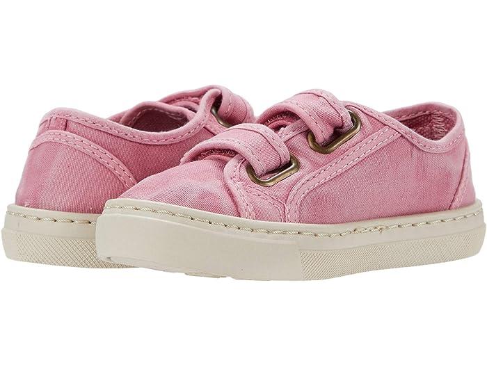 Cienta Kids Shoes 83777 (Toddler/Little