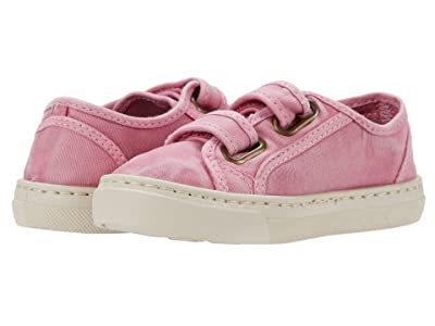 Cienta Kids Shoes 83777 (Toddler/Little Kid/Big Kid) Girl