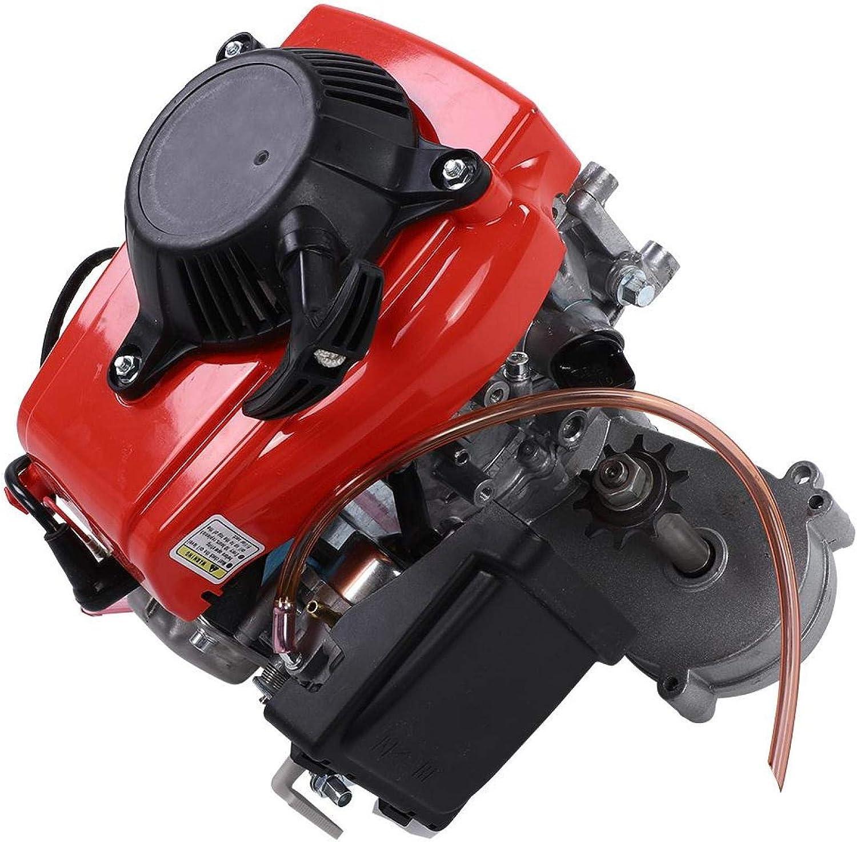 LIUTT Motor Kit New popularity -49CC 4 Stroke Gas for Max 42% OFF M Petrol Engine
