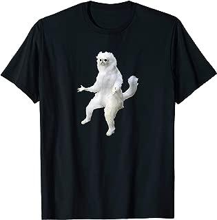 persian cat meme