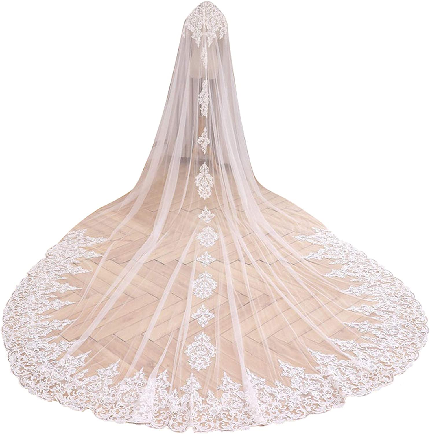 Wedding Veils for Brides Cathedral Length 1 Tier Floral Lace Edge Appliques Ivory White with Comb
