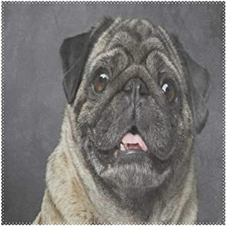 Lovexue Beige Sad Pug Dog Puppy Placemats for Dining Table Heat Resistant Square Table Mats Washable Cloth Place Mat Kitchen Table Decor for Kids Men Women Coffee Set of 4