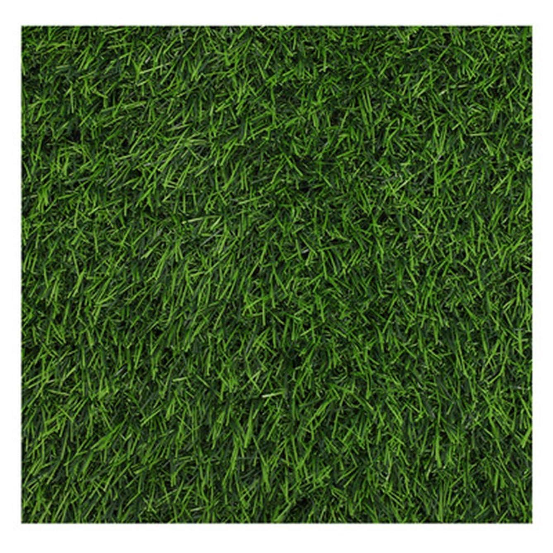 店員ワードローブ戦術LLYYC 人工芝屋内、屋外、グリーン10ミリメートル人工芝マット ラバーバッキングソフトリアル合成芝無毒簡単きれいにするためのパティオ,14x2m/42x6ft