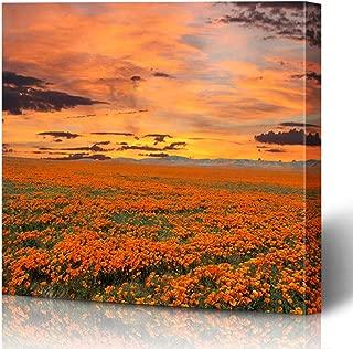 Ahawoso Canvas Prints Wall Art Printing 12x8 Orange Sunset California Poppy Sunny Field Sunrise Sky Nature Parks Bloom Country Dawn Day Desert Painting Artwork Home Living Room Office Bedroom Dorm