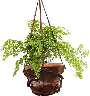 Hide & Drink, Thick Leather Hanging Plant Basket, Flowerpot Holder, Vintage Home Decor, Garden Accessories, Handmade Includes 101 Year Warranty :: Bourbon Brown