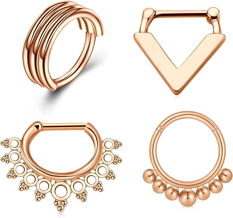 Briana Williams 16G Septum Rings Septum Piercing Jewelry Stainless Steel CZ Hinged Segment Clicker Septum Ring Clicker Daith Earrings Daith Piercing Jewelry for Women Men