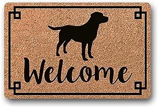 Novelcustom Welcome Mat,Sashay Away Shantay Te Quedas Rupaul Drag Race Alfombra Divertida Regalo De Inauguraci/ón De La Casa Bienvenido Felpudo Drag Race Rupaul 60X40 Cm