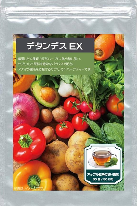 磁石スリル高齢者デタンデスEX (30包)