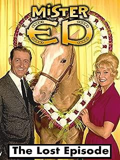 Best mr ed on tv Reviews