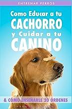Entrenar Perros: Como Educar a tu Cachorro y Cuidar a tu Canino (& Cómo Enseñarle 20 Órdenes)
